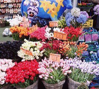 Amsterdam - de drijvende bloemenmarkt